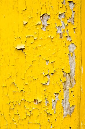 old yellow on wood photo