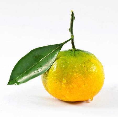 Thai mandarin orang
