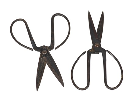 old tailor scissors isolated on white background photo