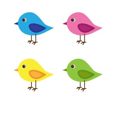 Ensemble de quatre oiseaux avec des couleurs différentes