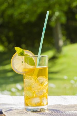 icecubes: cold summer drinks in garden