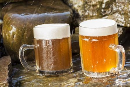 refreshing chilled german beer in summer garden Imagens