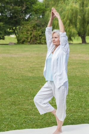 best ager women practising yoga and tai chi outdoors Standard-Bild