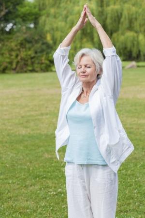 Best Ager Frauen praktizieren Yoga und Tai Chi im Freien Lizenzfreie Bilder