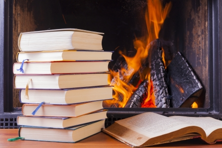 reading   learning at warm fireplace in winter