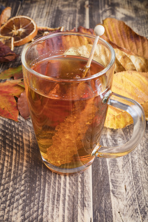 fall autumn hot fresh tea bad weather at home cozy cocooning concept