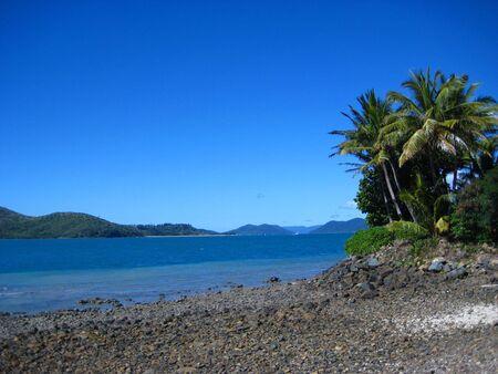 daydream: Daydream island Australia