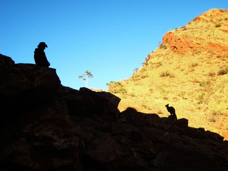 Man and rock wallaby photo