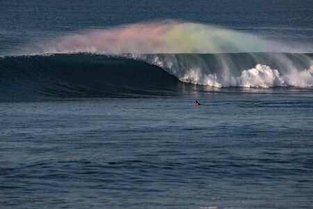 Perfect barrel wave with rainbow spray and surfer