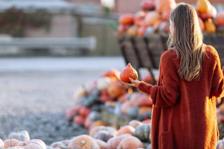 Back view of woman with small pumpkin in hand near wooden wagon with pumpkin on farmers market in brown sweater. Cozy autumn vibes Halloween, Thanksgiving day Imagens