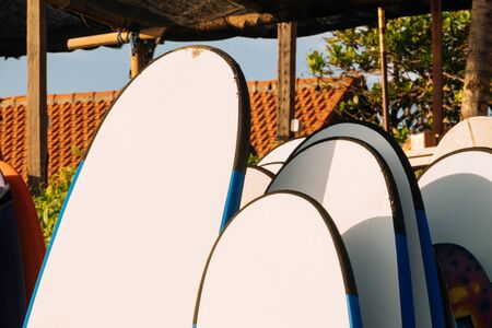 Close up Set of white and blue surfboard for rent on the beach. Multicolored surf boards different sizes and colors surfing boards on stand, surfboards rental place.