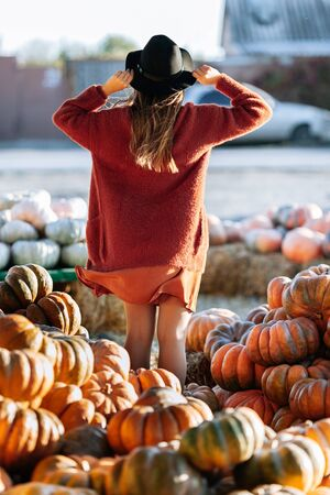 Back view of woman in brown sweater amd hat on farmers market with orange pumpkins. Cozy autumn vibes Halloween, Thanksgiving day