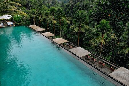 Aerial view of luxury infinity pool in tropical jungle and palm trees. Luxurious villa, swimming pool in forest, Ubud, Bali.