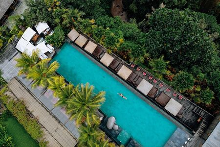 Aerial view of luxury pool with umbrellas and swimming around palm trees and jungle.Vacation concept. Drone photo.
