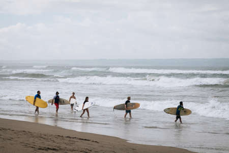 CANGGU, BALI, INDONESIA - FEBRUARY 25, 2019: group of surfers walking by the sea shore holding surf boards. Surf lessons. Summertime, water sport and holidays concept.