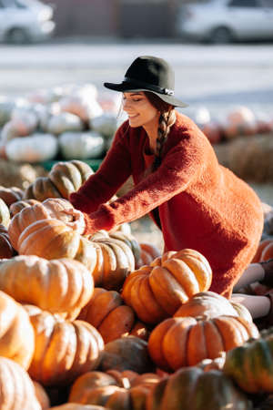 Portrait of happy woman choosing ripe orange pumpkin on farmers market in brown sweater, dress. Cozy autumn vibes Halloween, Thanksgiving day Imagens