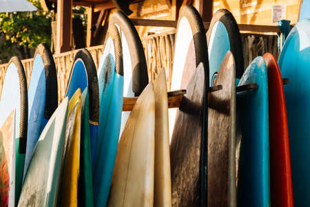 Set of different color surf boards in a stack by ocean.Bali.Indonesia. Surf boards on sandy beach for rent. Surf lessons on Weligama beach, Sri Lanka. 版權商用圖片