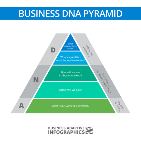 factor: Multicolored diagram of business DNA stacked pyramid