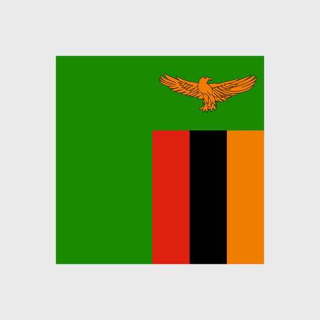 zambian flag: Set   vector icons with Zambia flag