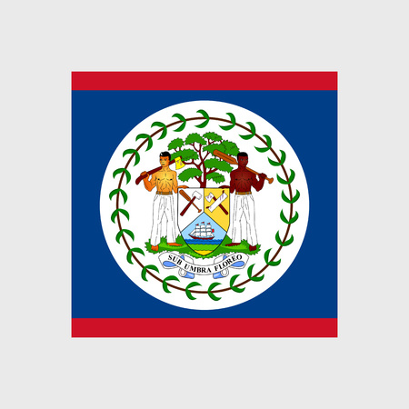 belize: Set of vector icons with Belize flag Illustration