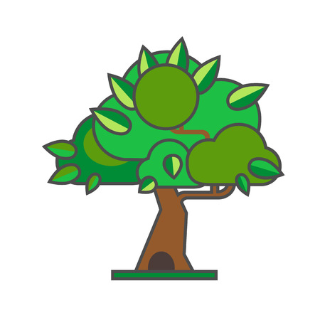 the thick forest: Summer tree vector icon. Colored line illustration of tree with thick leaves