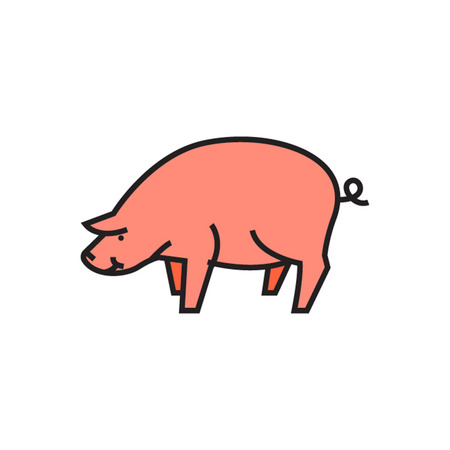 zoology: Pig icon. Domestic animal, farm, farming. Animal concept. Can be used for topics like domestic animal, farming, zoology