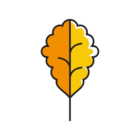 topics: Oak leaf illustration. Tree, park, autumn, nature. Autumn concept. Can be used for topics like season, plant, nature