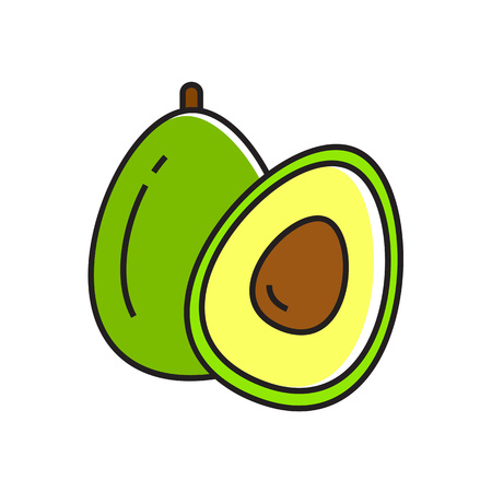 Illustration of avocado cut in half. Vegetable, healthy food, greengrocery. Food concept. Can be used for topics like healthy food, vegetables, greengrocery Illustration