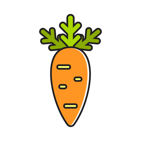 Illustration of carrot. Healthy food, vegetables, vegetarianism. Food concept. Can be used for topics like healthy food, cooking, vegetables