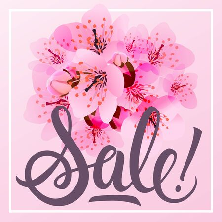 leaflets: Sale lettering with cherry flowers in background. Handwritten text, calligraphy. For posters, banners, leaflets and brochure. Illustration