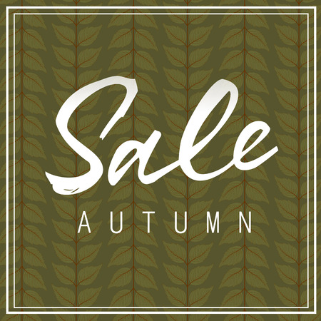 flier: Sale autumn lettering. White sale autumn inscription in two line frame isolated on background decorated with leaves. Calligraphy can be used for postcard, flier, banner