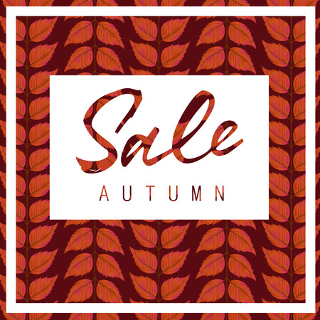 typed: Sale autumn lettering on white rectangle with frame and leaves pattern in background. Handwritten and typed text, calligraphy. For posters, banners, leaflets and brochures.