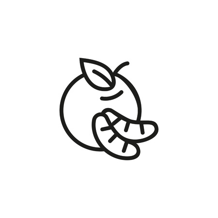 Tangerine line icon. Clementine, mandarin, food. Citrus fruit concept. Vector illustration can be used for topics like vitamin, organic, summer
