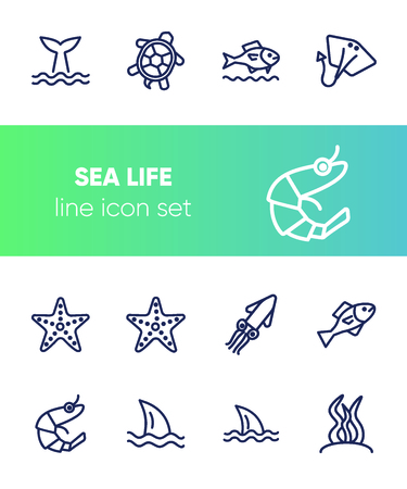 Sea life line icon set. Turtle, shark, squid. Nature concept. Can be used for topics like diving, aquarium, ocean