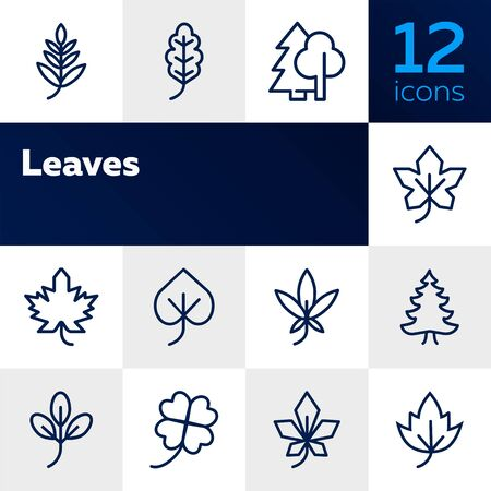 Leaves line icon set. Maple, oak, fir tree. Nature concept. Can be used for topics like forest, park, ecology