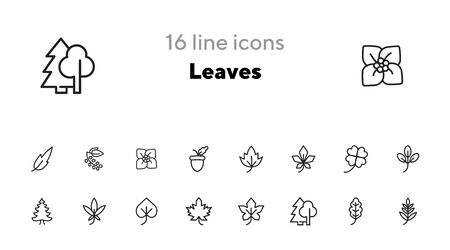 Leaves icon. Set of line icons on white background. Forest, fall, European flora. Trees concept. Vector illustration can be used for topics like season, botany, biology Ilustração