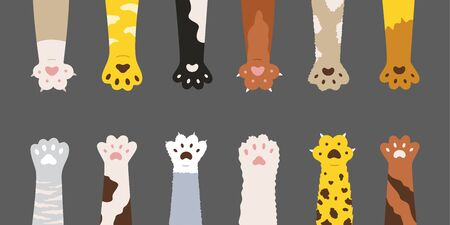 Fluffy multicolored cats paws set. Cute feline clutches isolated on grey background. Vector illustration for domestic animal, pet, kittens, concept