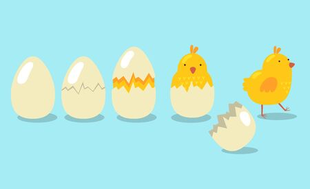 Baby chick hatching stages set. Cracked egg, yellow little bird, Easter chicken. Flat vector illustration for poultry, nature, Easter celebration concept