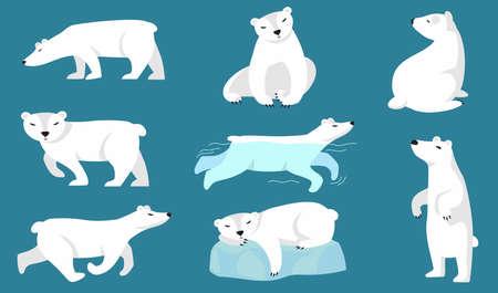 Polar bear set. Cute white arctic bear walking, running, swimming, sitting, sleeping on ice. Vector illustration for zoo, winter character, northern wild animal concepts Vecteurs