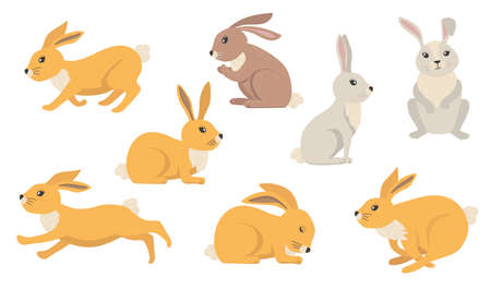 Cartoon rabbits set. Furry hares of different colors, cute Easter bunnies standing, sitting, running, jumping, sleeping. Vector illustration for farming, animals, pets, nature concepts 向量圖像