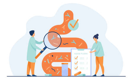 Tiny medical doctors examining gastrointestinal tract and digestive system isolated flat vector illustration. Abstract gut microorganisms and friendly flora. Healthy diet and nutrition concept