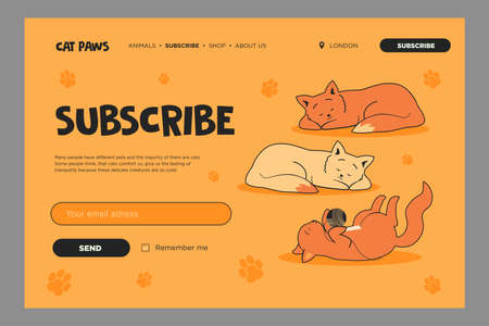 Vivid email subscription design with lovely cats. Online newsletter template with sleeping or playing kittens. Pets and domestic animals concept. Design for website illustration