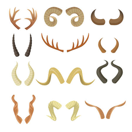 Various horns set. Pairs of antlers, ram, reindeer, moose, cow, deer, antelope, stag parts isolated on white. Vector illustration for animals, wildlife, hunting trophy, decoration concept