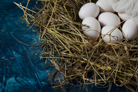 Eggs in the Nest on the Blue Background. Copy space. Foto de archivo