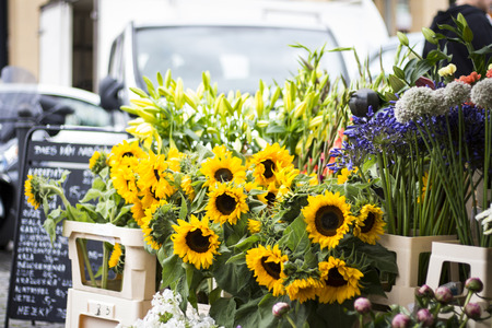 Beautiful picture of sunflowers at a street fair Banco de Imagens
