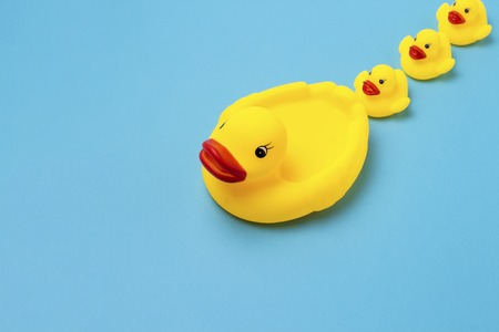 Rubber toy of yellow color Mama-duck and small ducklings on a blue background. The concept of maternal care and love for children, the upbringing and education of children. Flat lay, top view.