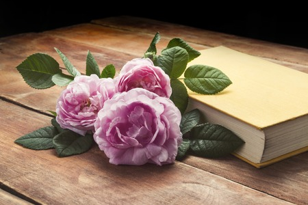 Pink roses and book with a yellow cover on a wooden background. The concept of romantic stories and novels.