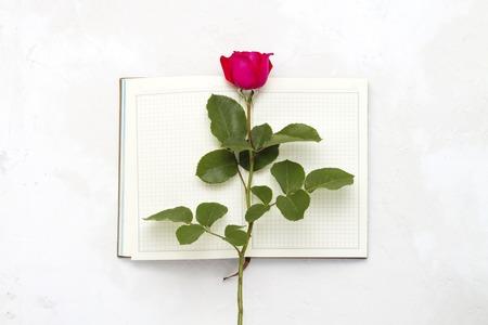 Rote Rose auf einem offenen Tagebuch auf hellem Steinhintergrund. Flache Lage, Ansicht von oben.