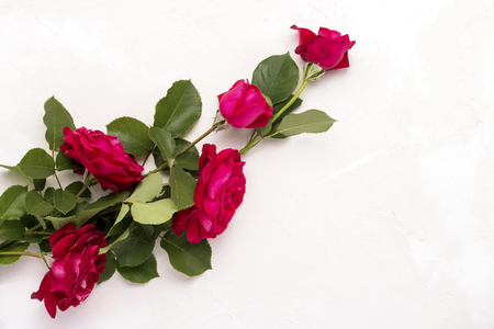 Red roses on a light stone background. Flat lay, top view. Stok Fotoğraf