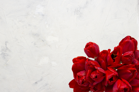Red Tulips on a Light Stone Background. In the center of the image is a copy space. Flat lay, top view.